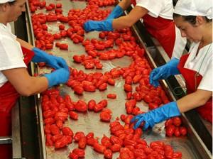 industria-alimentare-300x224